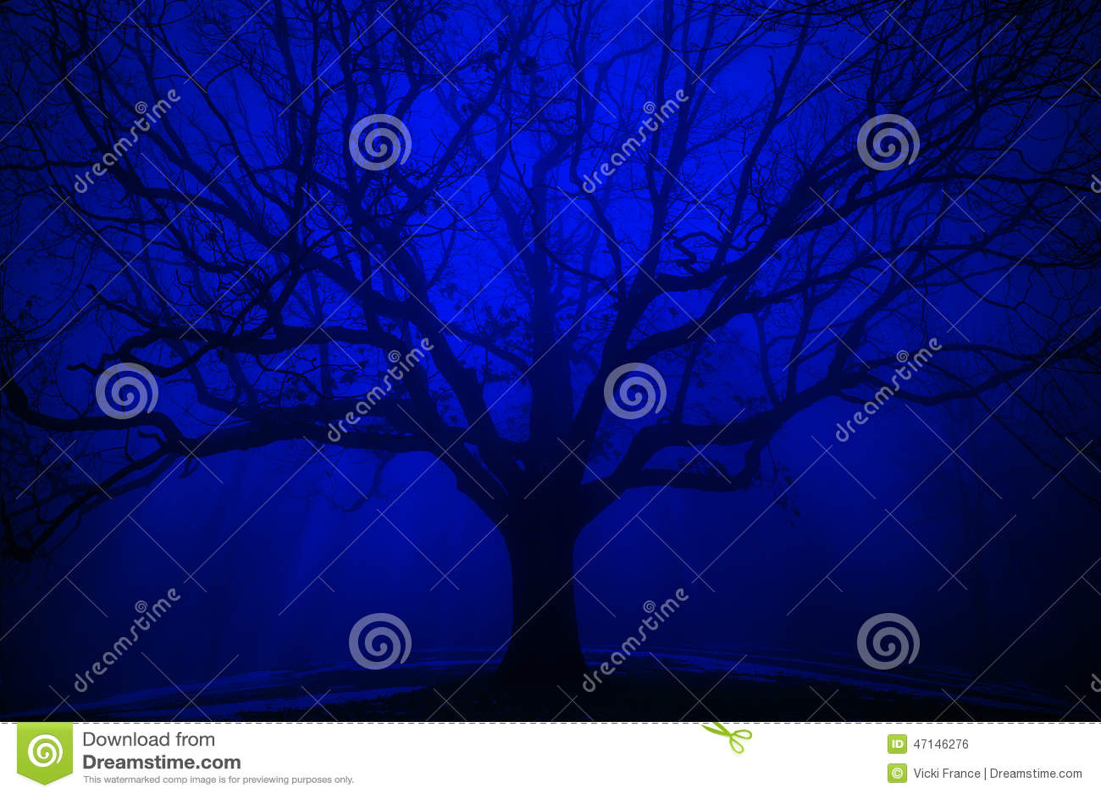 Arbre surréaliste en brouillard de bleu d hiver