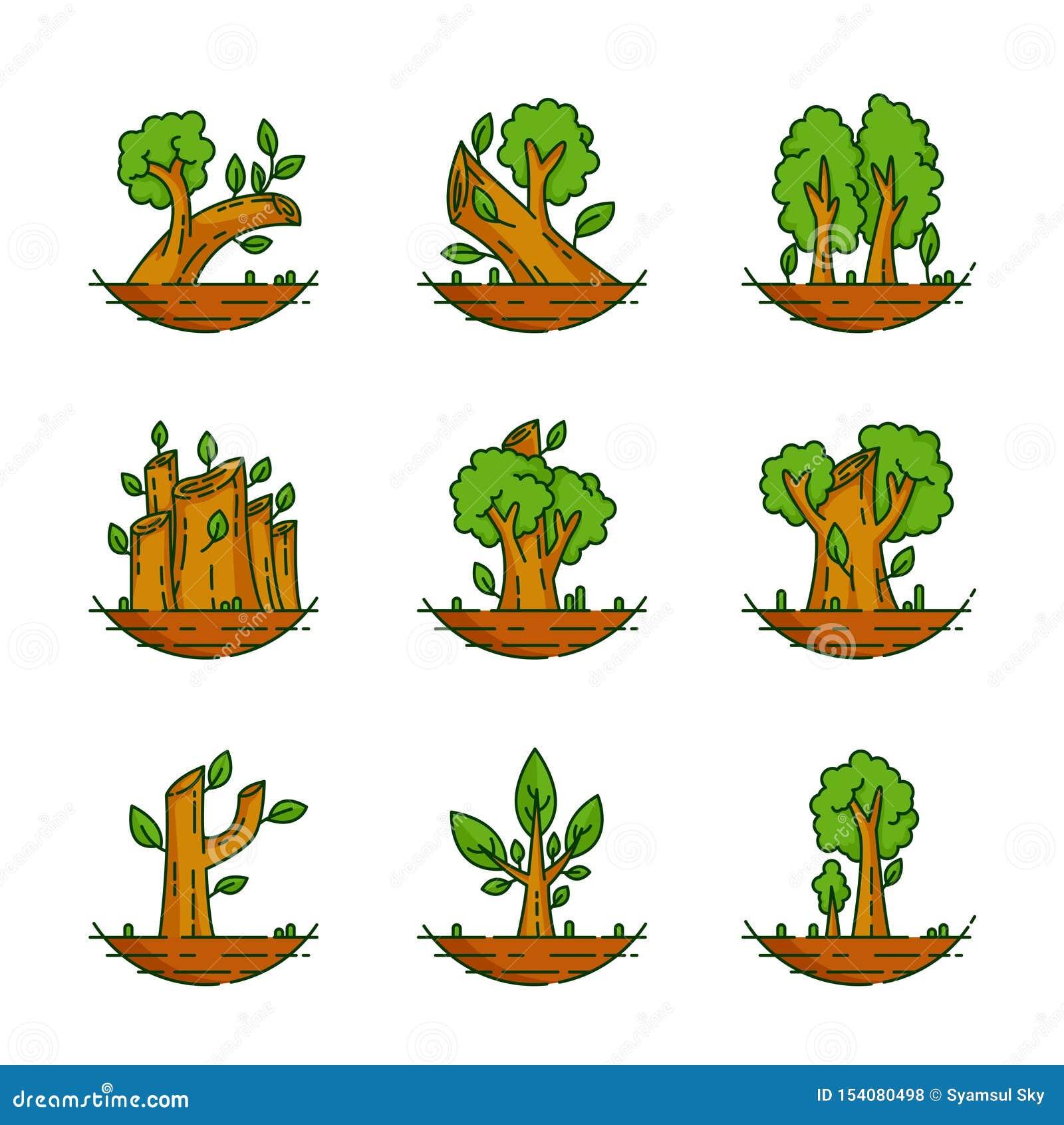 Arbre, usine, forêt, nature, illustration botanique, collection d arbres