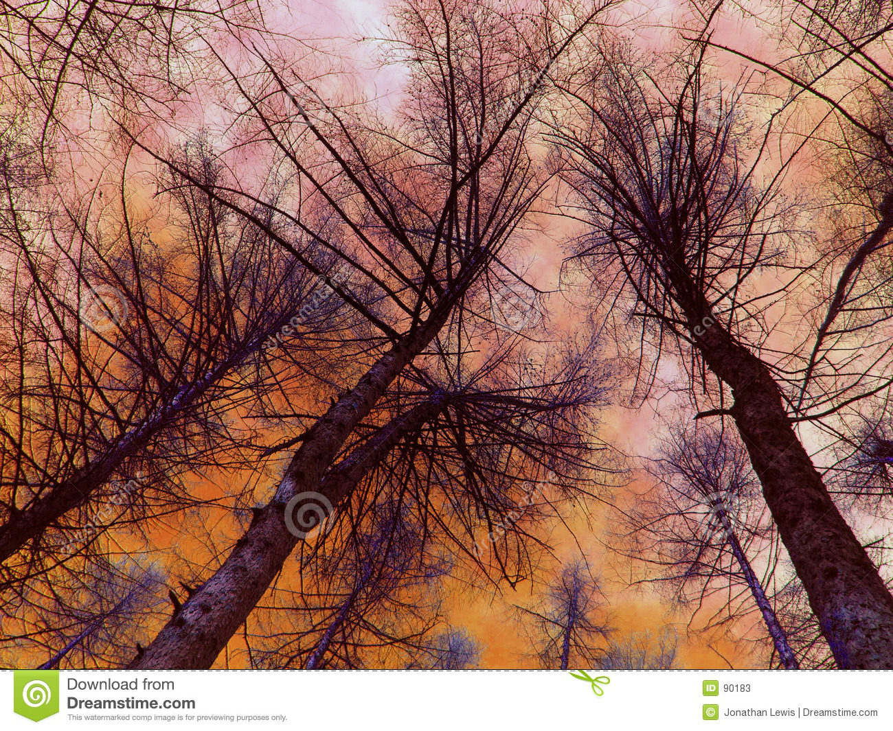 Arbres ardents