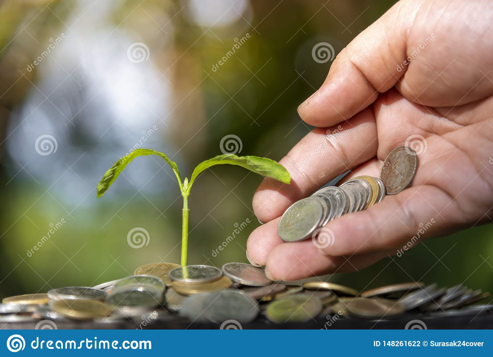 Arbres avec l argent, enregistrant l argent et ?levant des mains