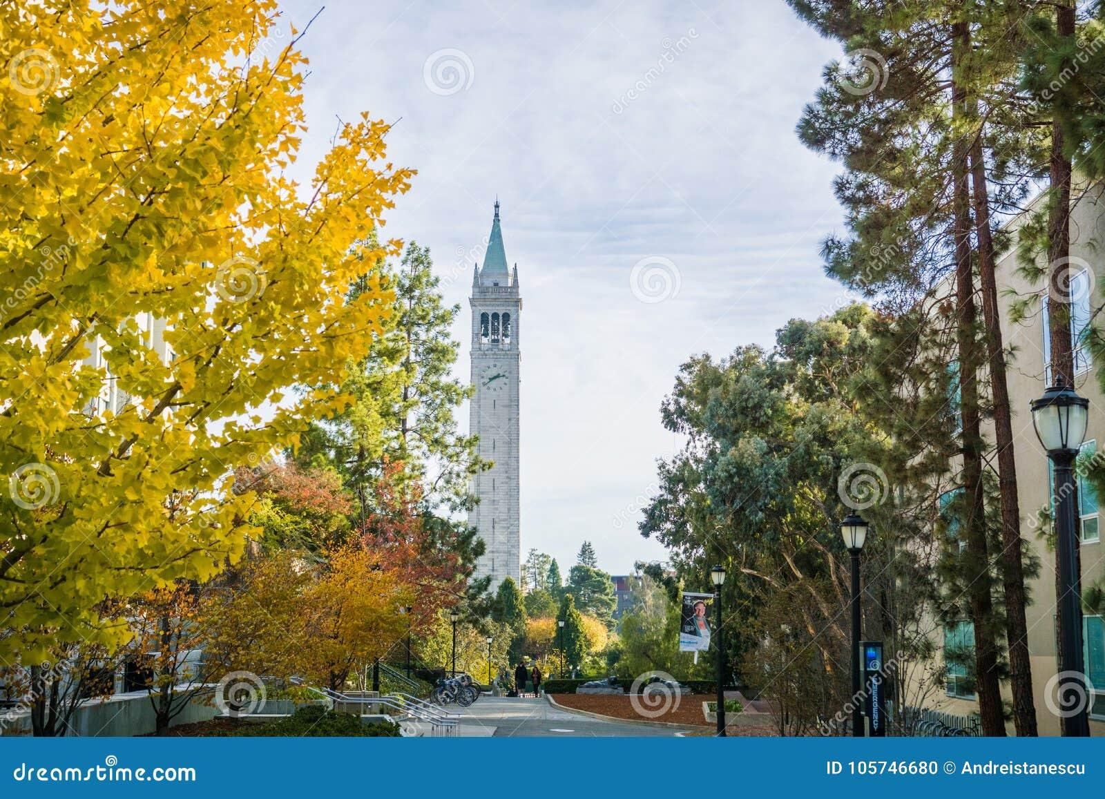 Branchement Berkeley