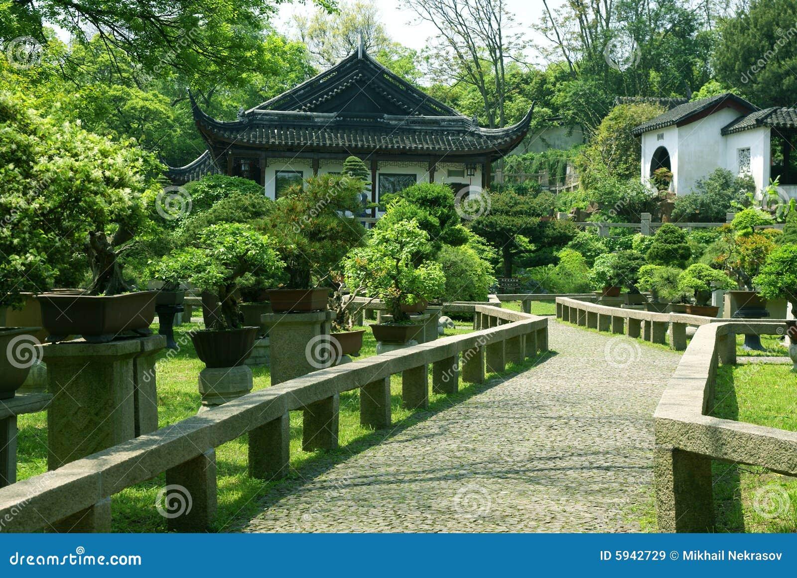 Arbres de bonzaies au jardin traditionnel chinois images - Arbres de jardin ...