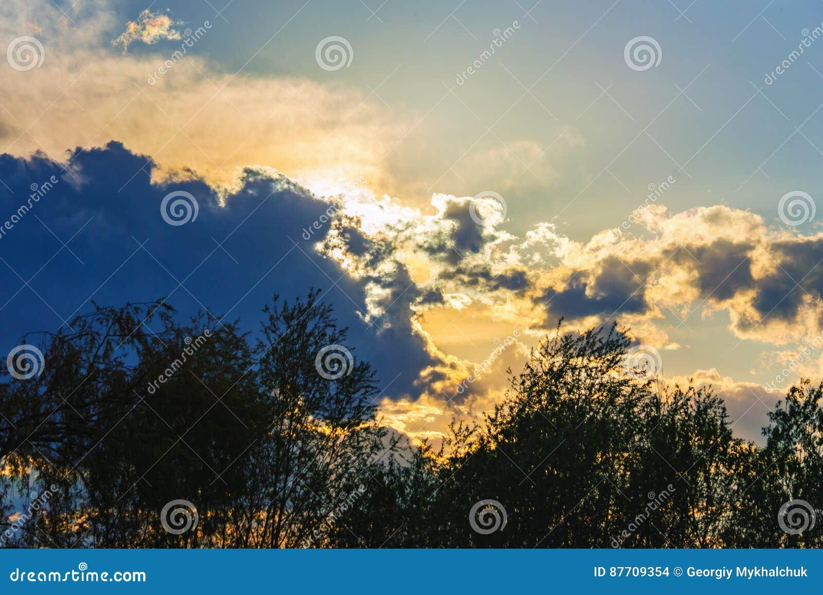 Arbres dramatiques de nuages de lumière du soleil de ciel de fond silhouettés