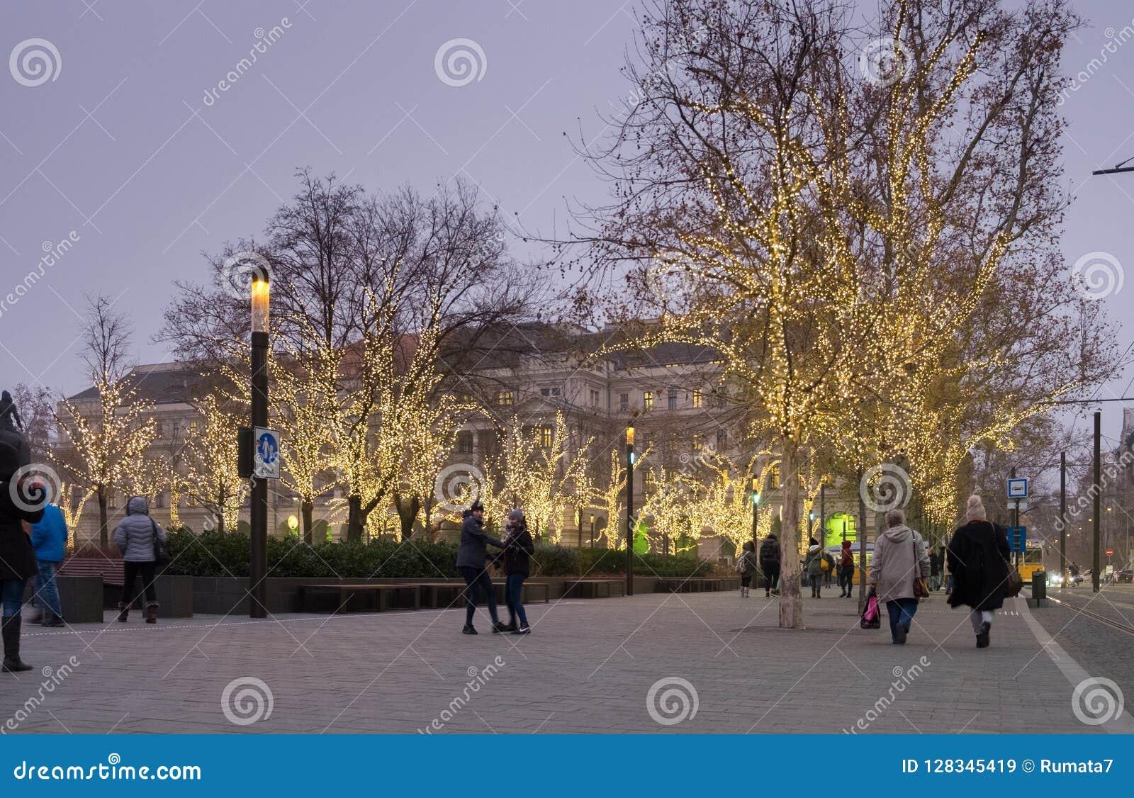 Arbres lumineux par Noël à côté du parlement de Budapest