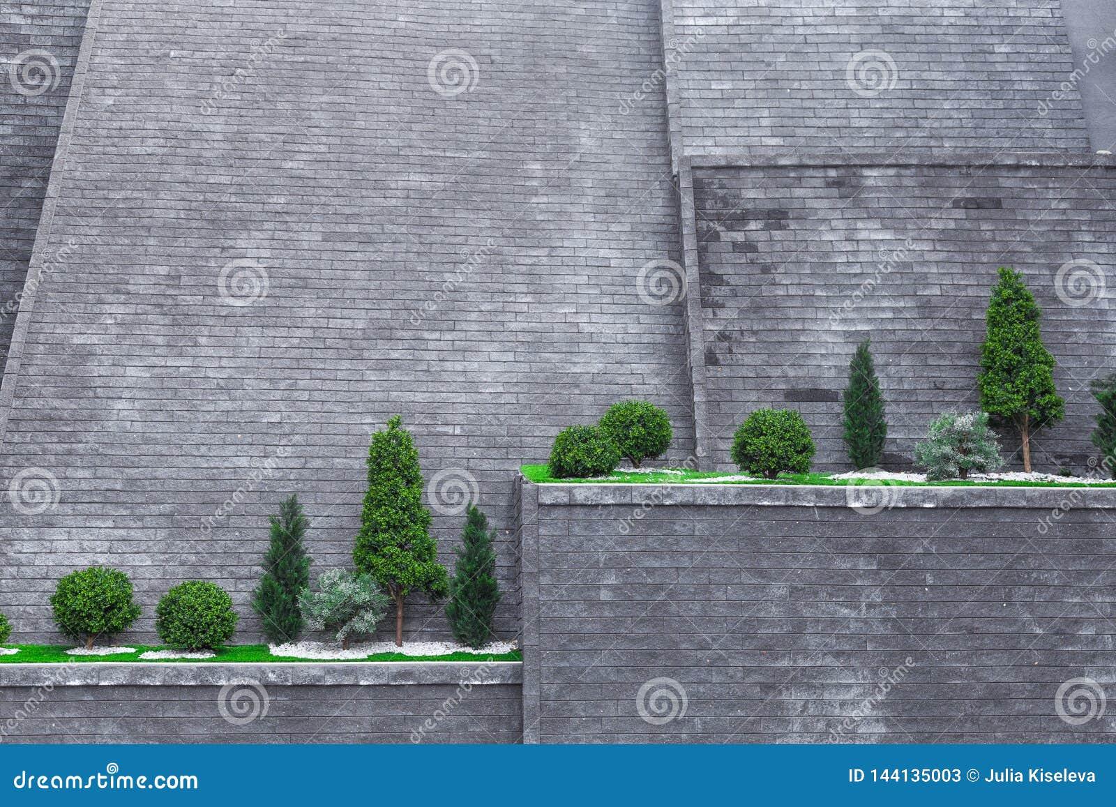 Arbres sur un haut mur de briques