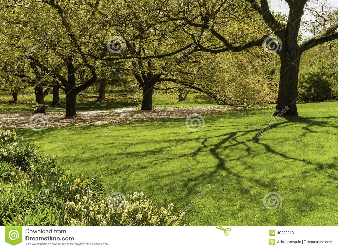 Arbres usines jardin botanique new york photo stock for Jardin new york