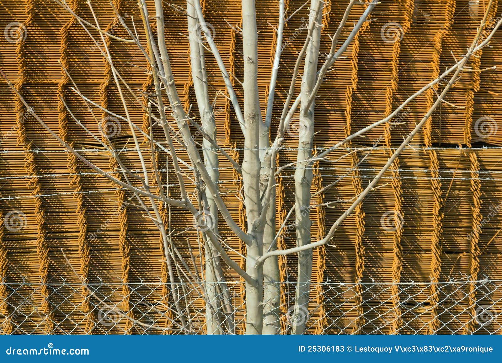 Arbusto arrestato sulla parte inferiore del metallo
