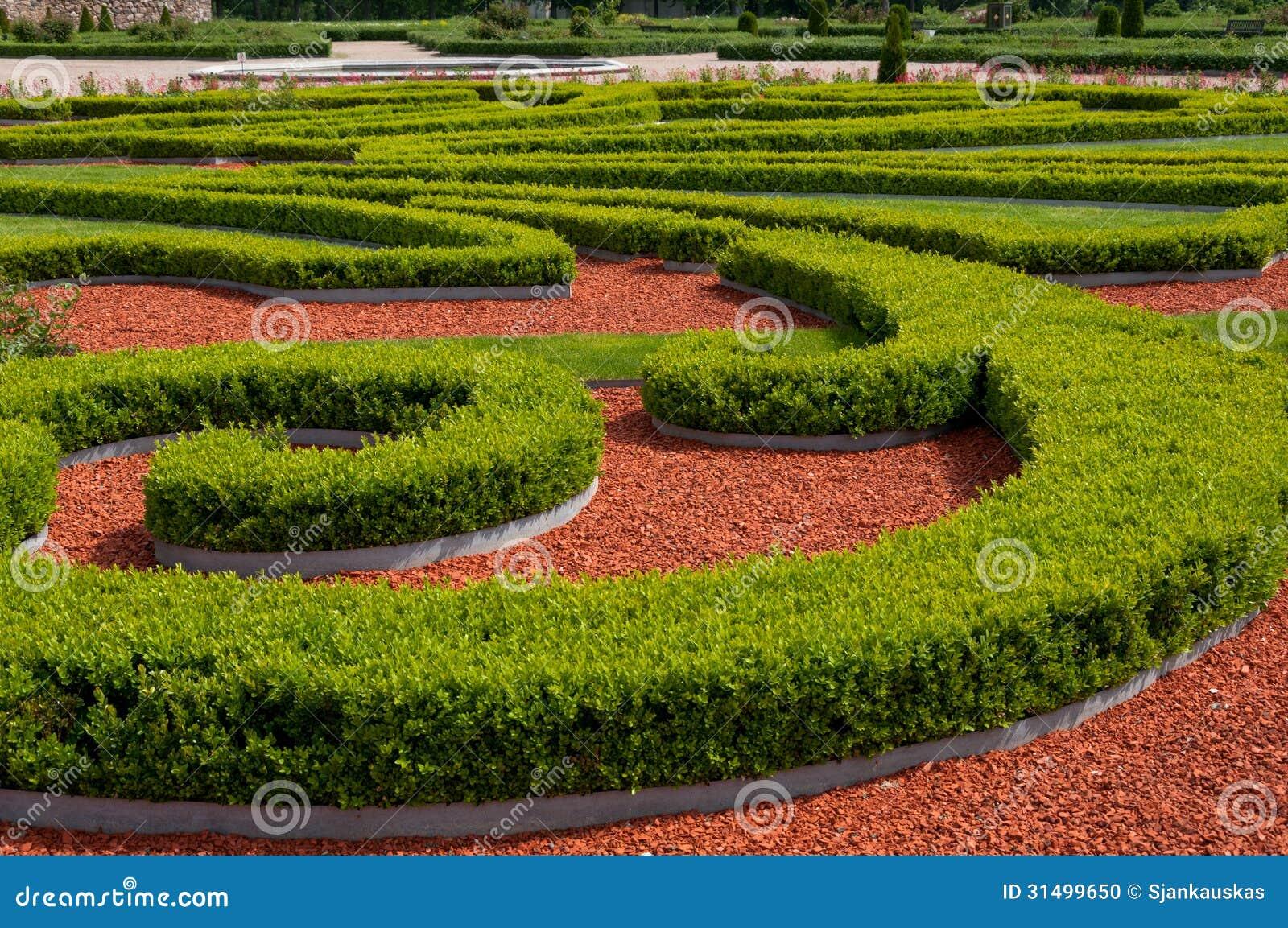 Arbustos del jard n for Arbustos de jardin