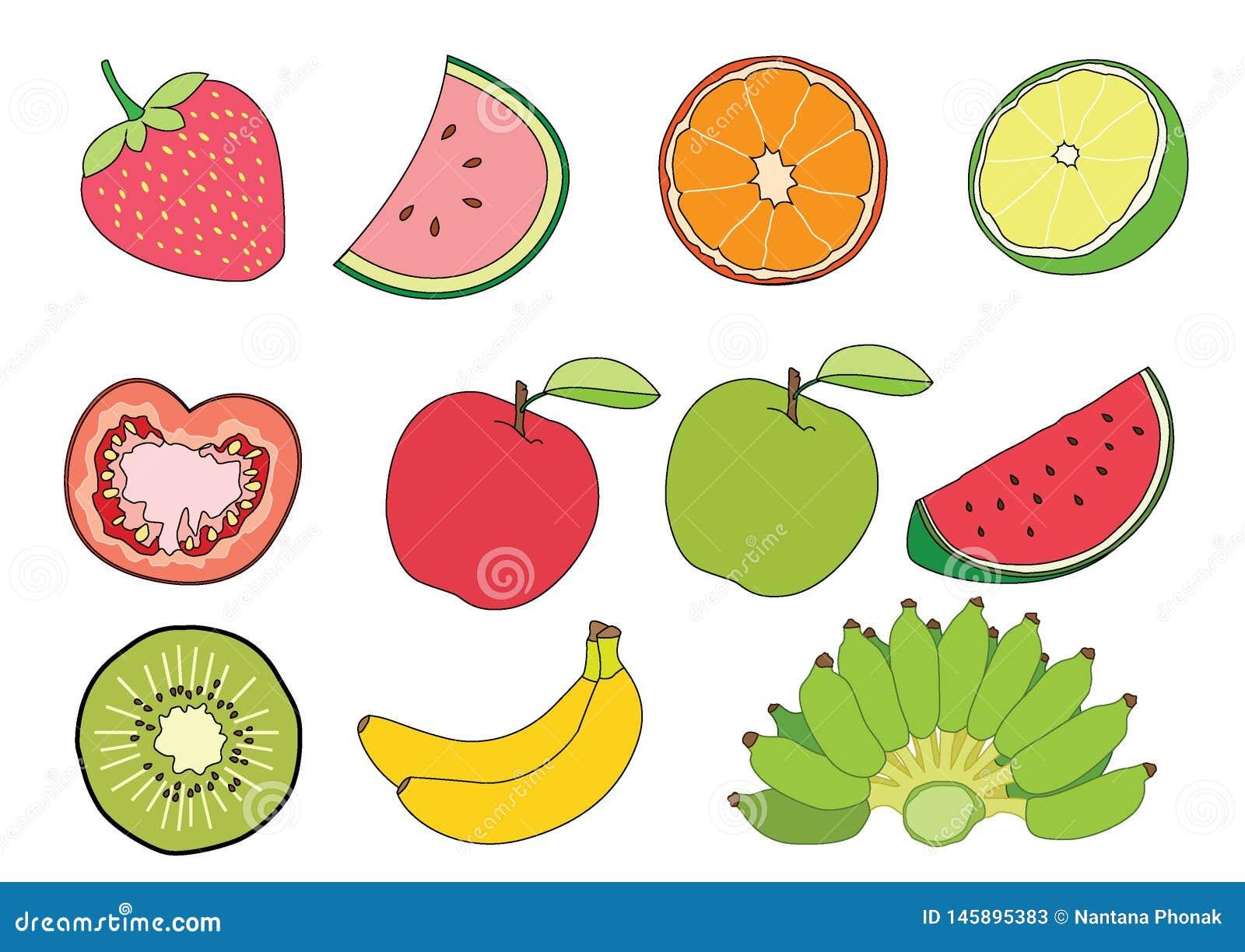 Arbuz Pomarańczowa cytryna Pomidorowy Jabłczany czerwony Apple - zielona kiwi truskawka i banan owoc na białym tło ilustracji wek