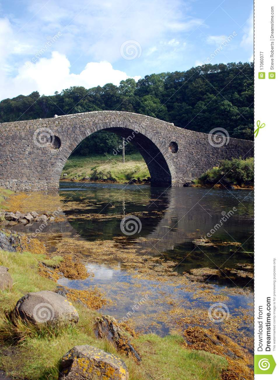 View of arched stone bridge over river with forest in background