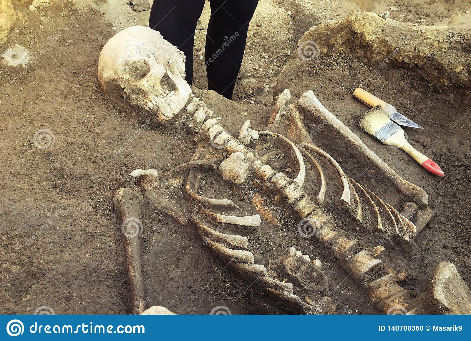 Archeologiczne ekskawacje i znalezisko kości kościec w ludzkim pogrzebie, pracujący narzędzie, władca, nóż, muśnięcie, szczegół a