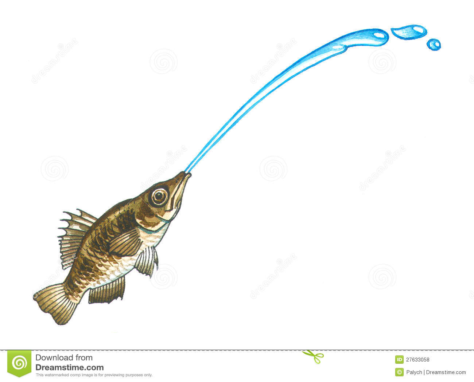 Archerfish (spinner fish or archer fish).
