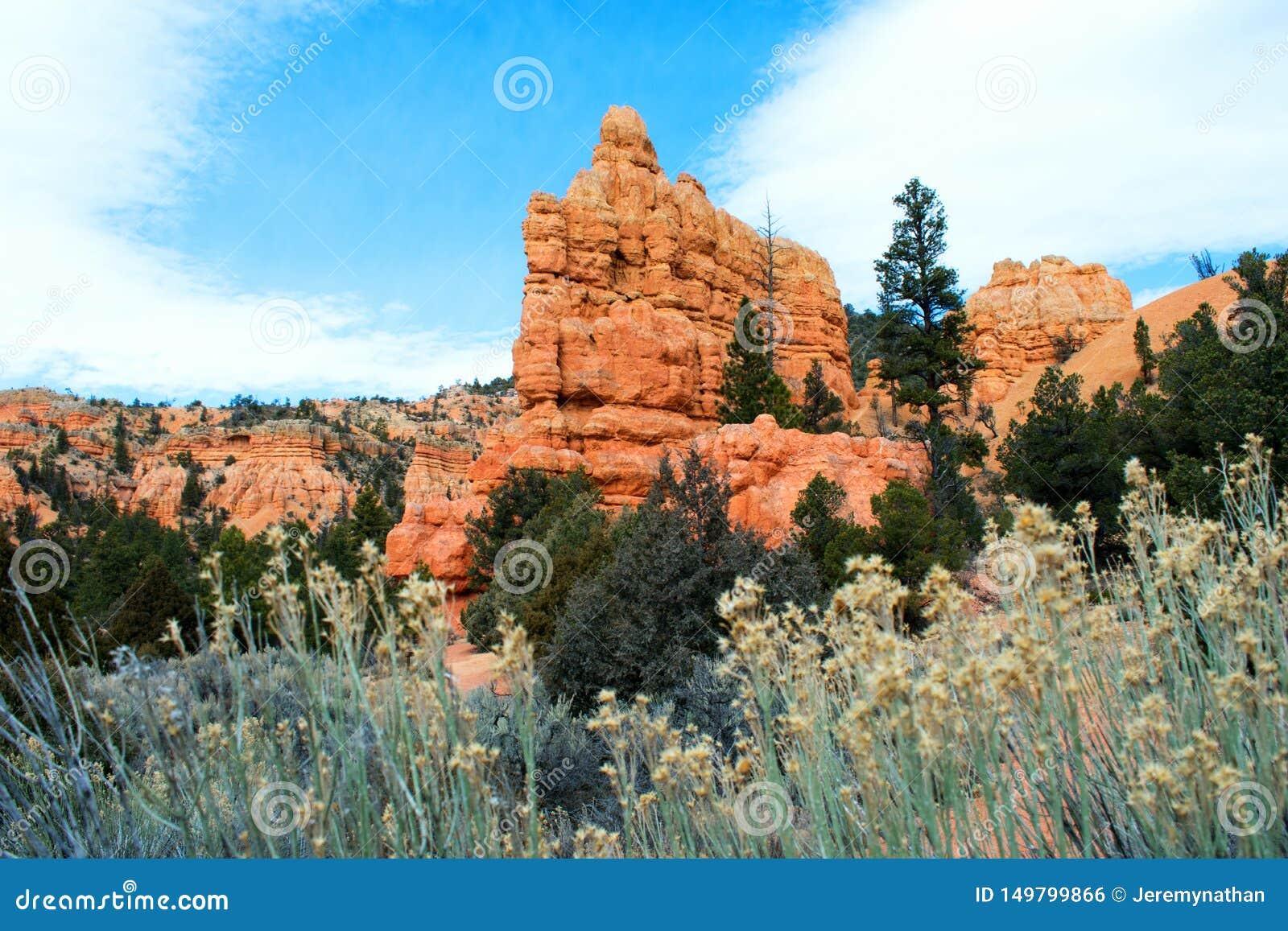 Arches National Park, Rocks Red Desert Mountain Landscape