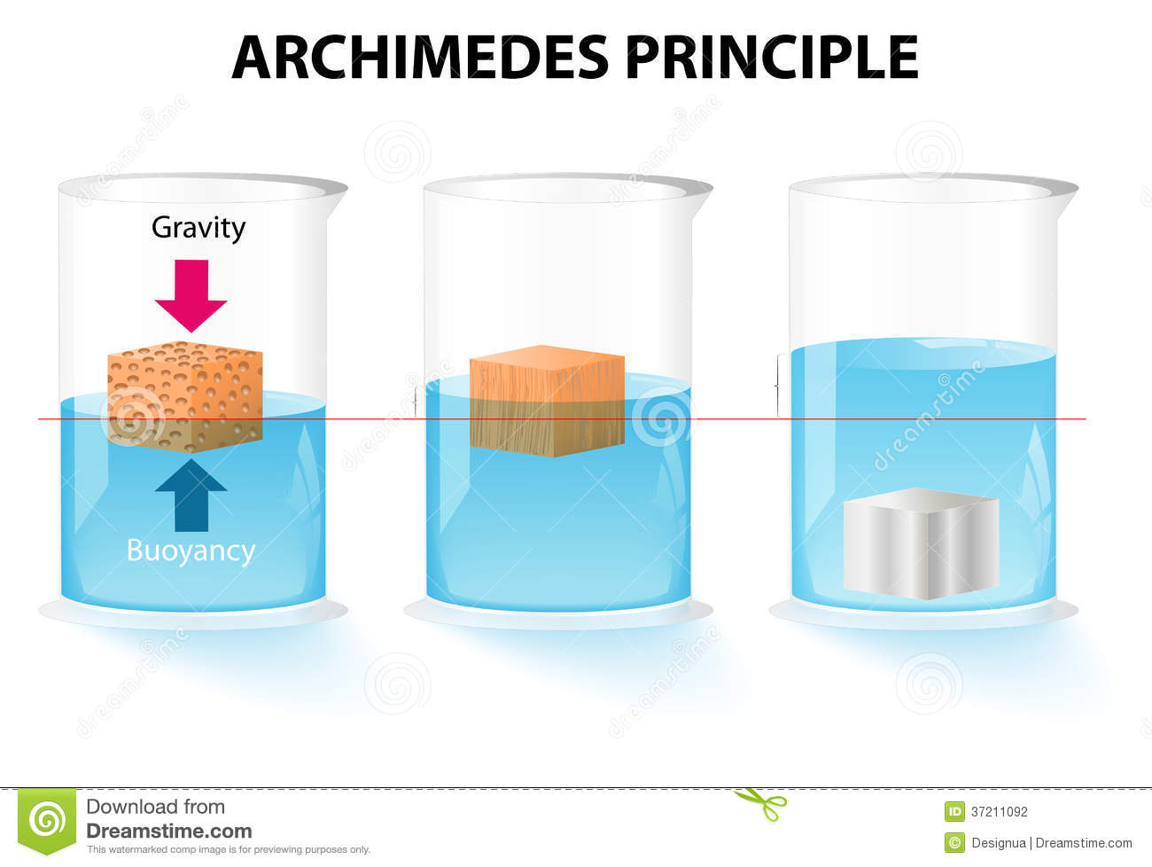 Archimedes Principle Of Buoyancy | www.imgkid.com - The ...