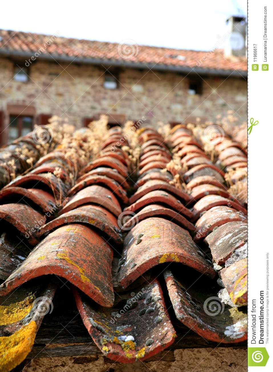 Architectural Detail Of Grunge Roof Tiles Royalty Free