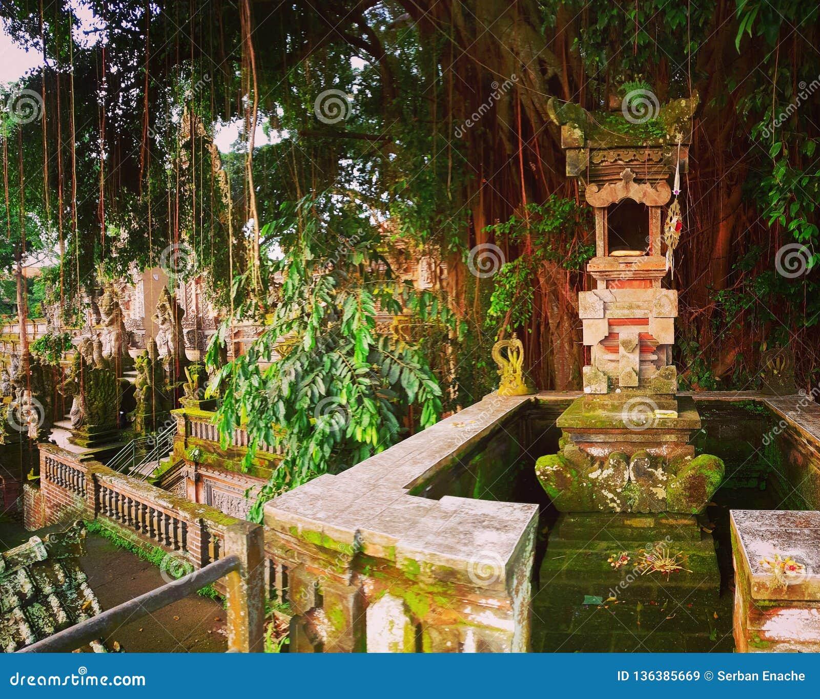 Architecture dans les jungles, Ubud, Bali