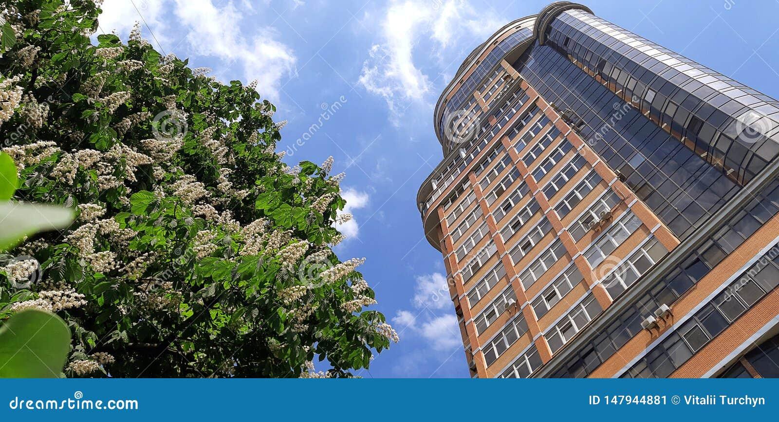 Architektur der Stadt