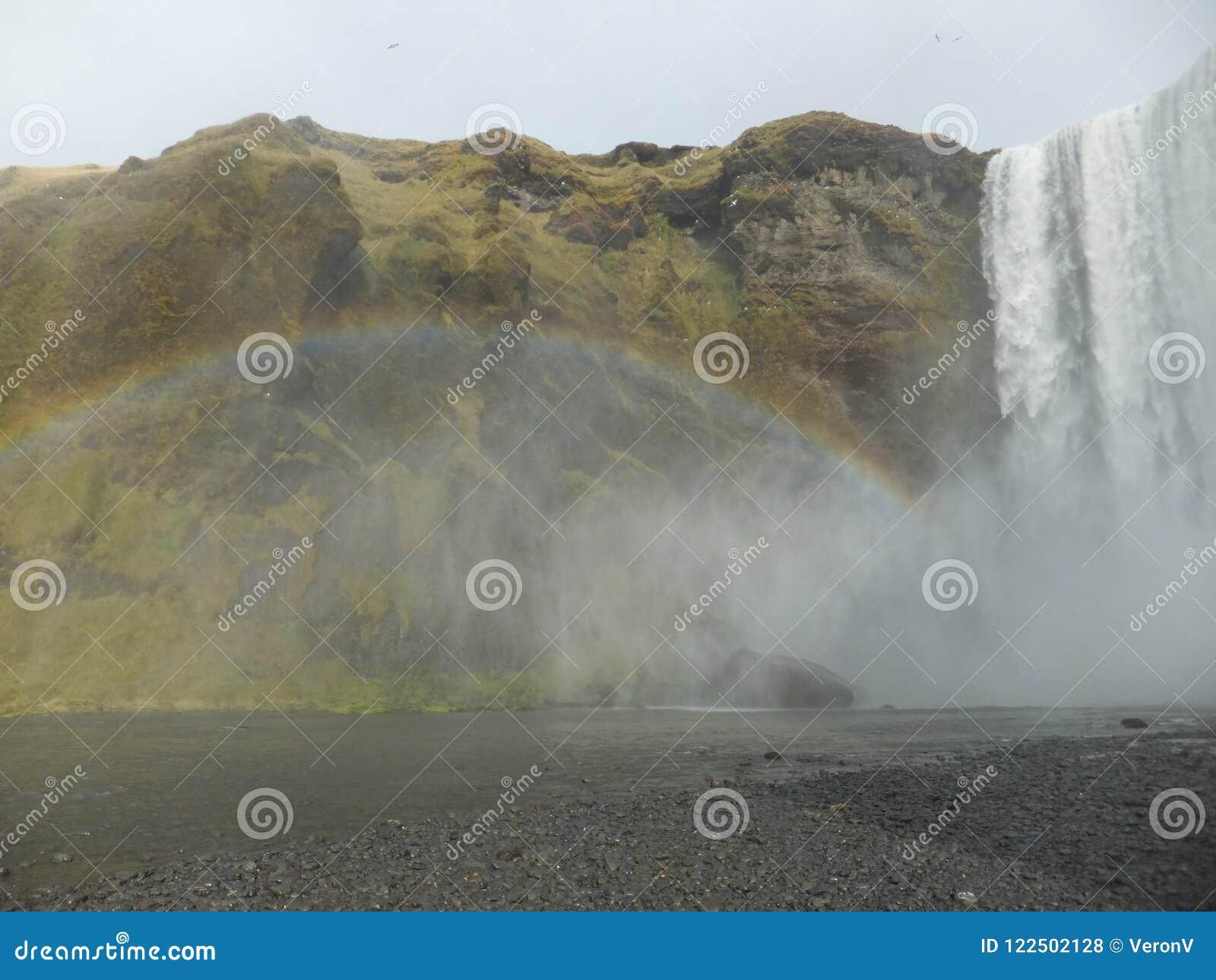 Arco-íris criado pela névoa que vem da cachoeira dos gafoss do ³ de SkÃ, Islândia