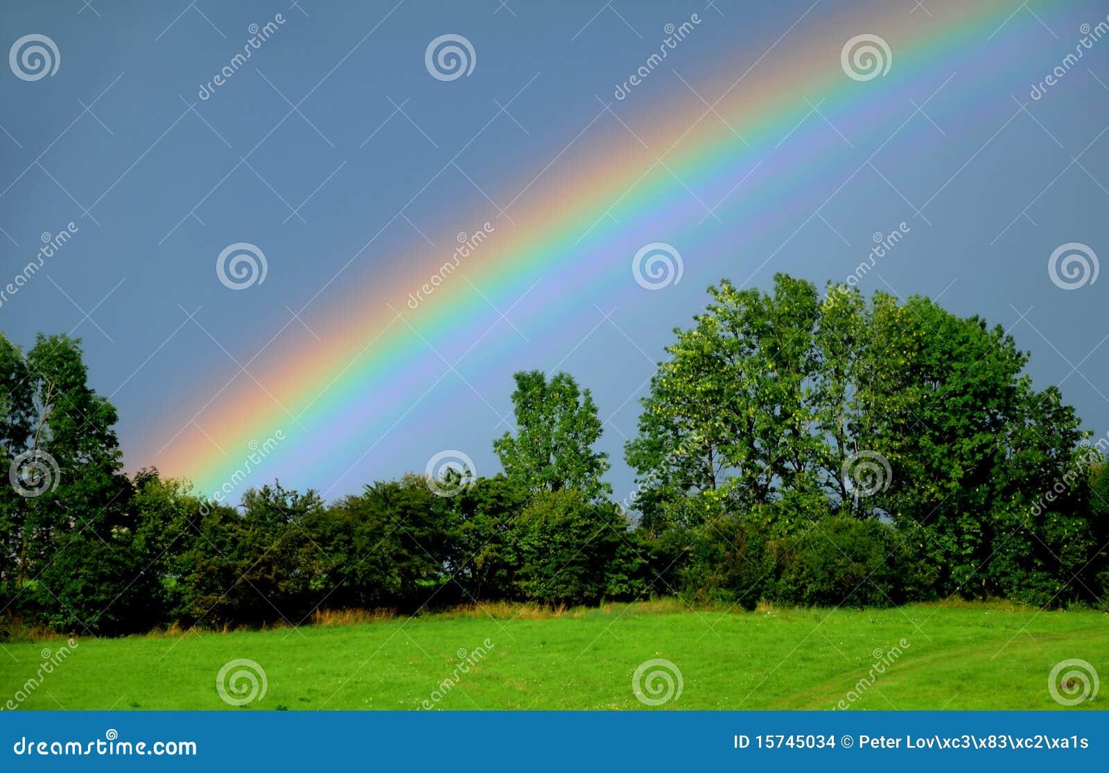 Arco-íris sobre árvores