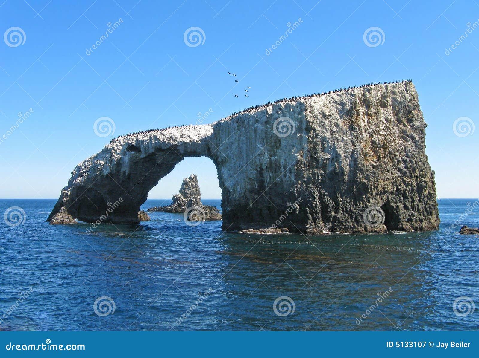 Arco de Anacapa, cormorants