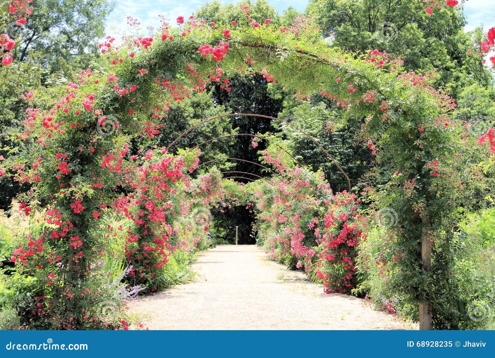 Arco de Rosa no jardim