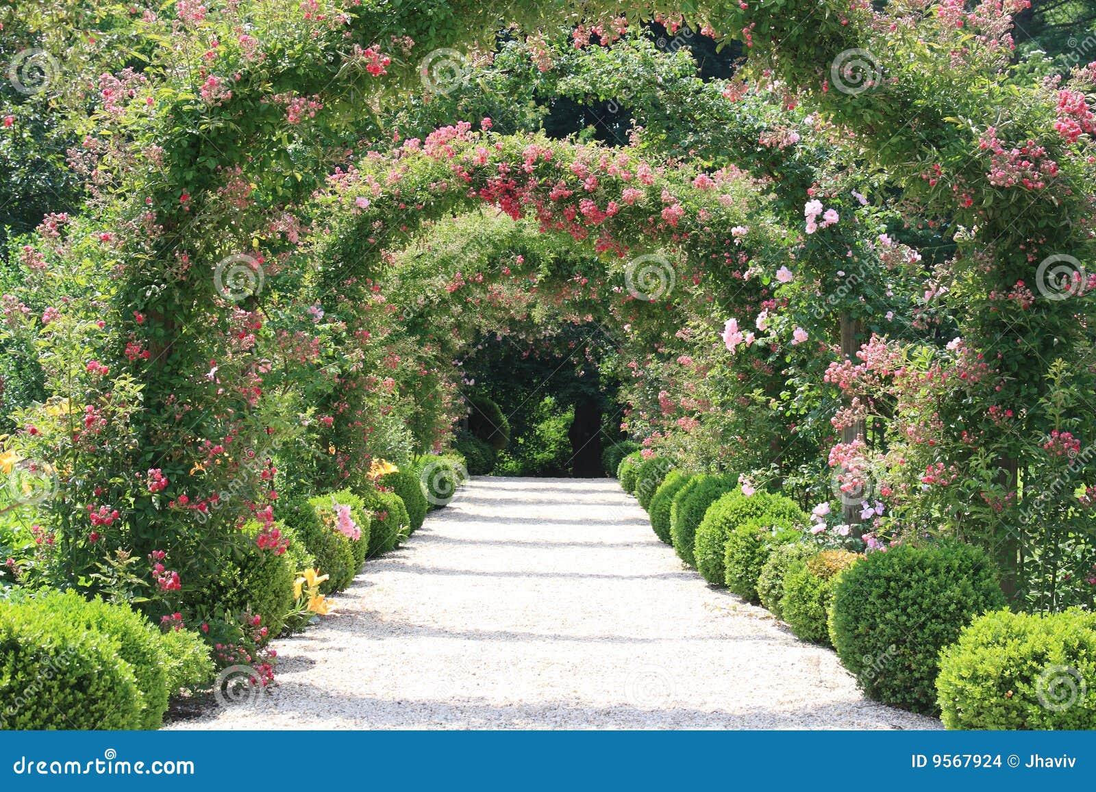 Найти картинки природа цветочные арки в саду 2