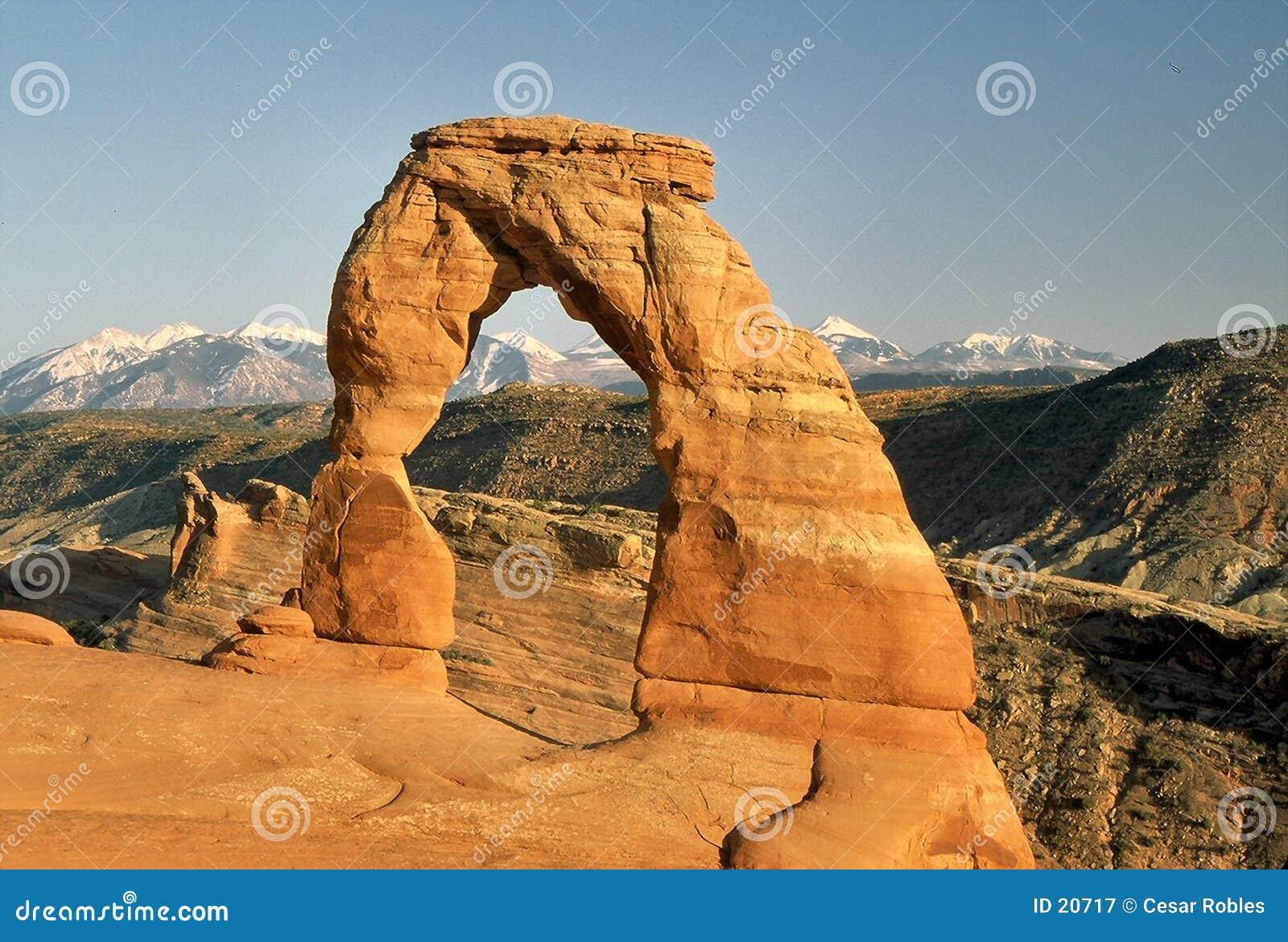 Arco delicado