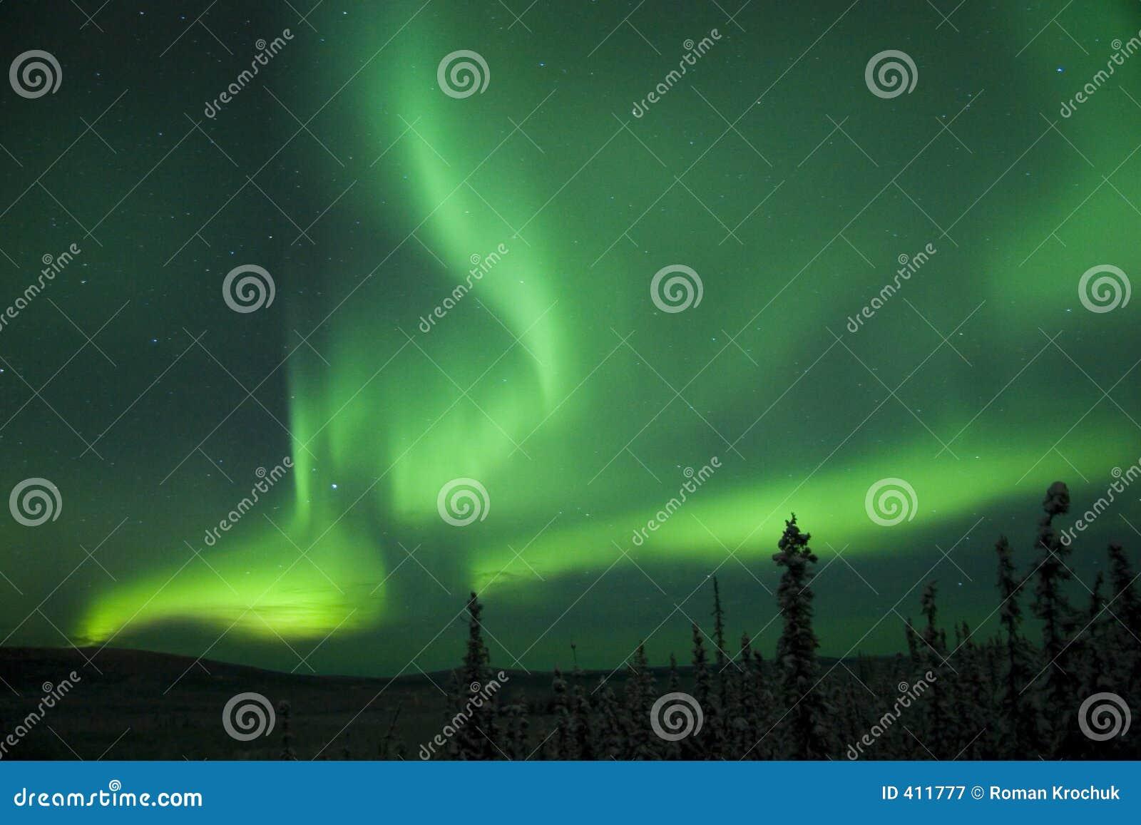 Arco di scissione attivo di Borealis dell aurora