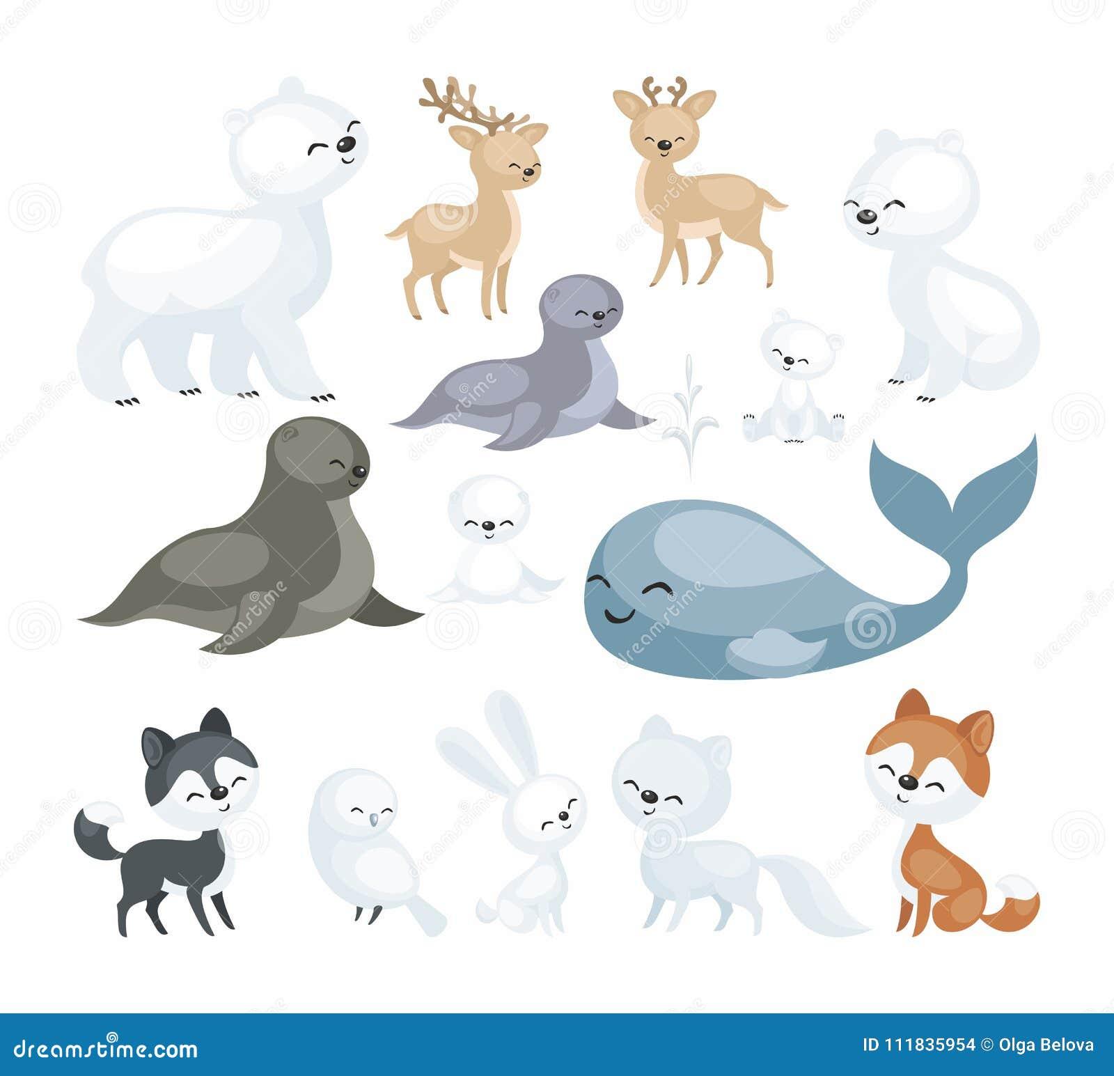 arctic animals set stock vector illustration of pets 111835954