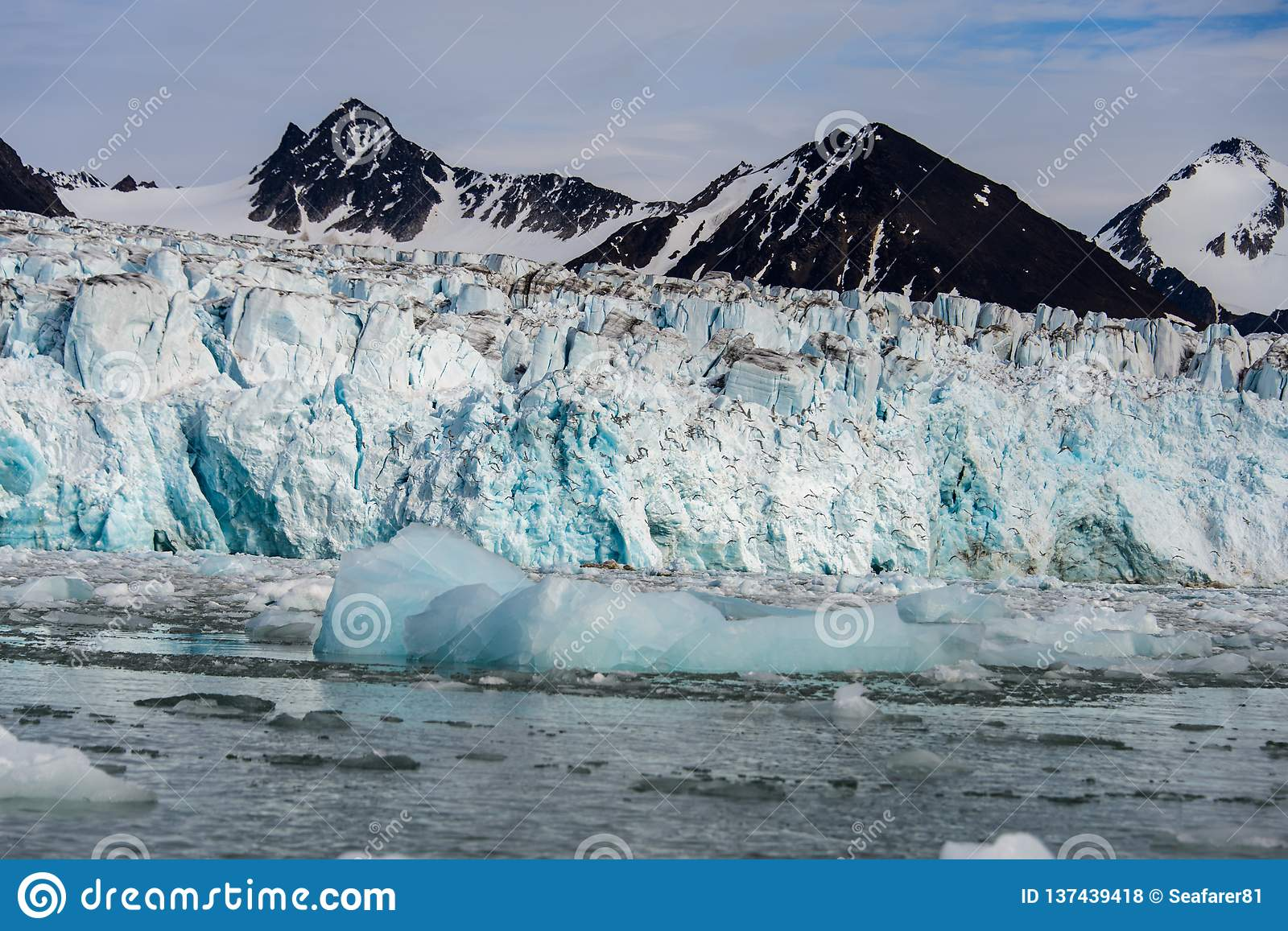 Arctic landscape in Svalbard with glacier in summer time