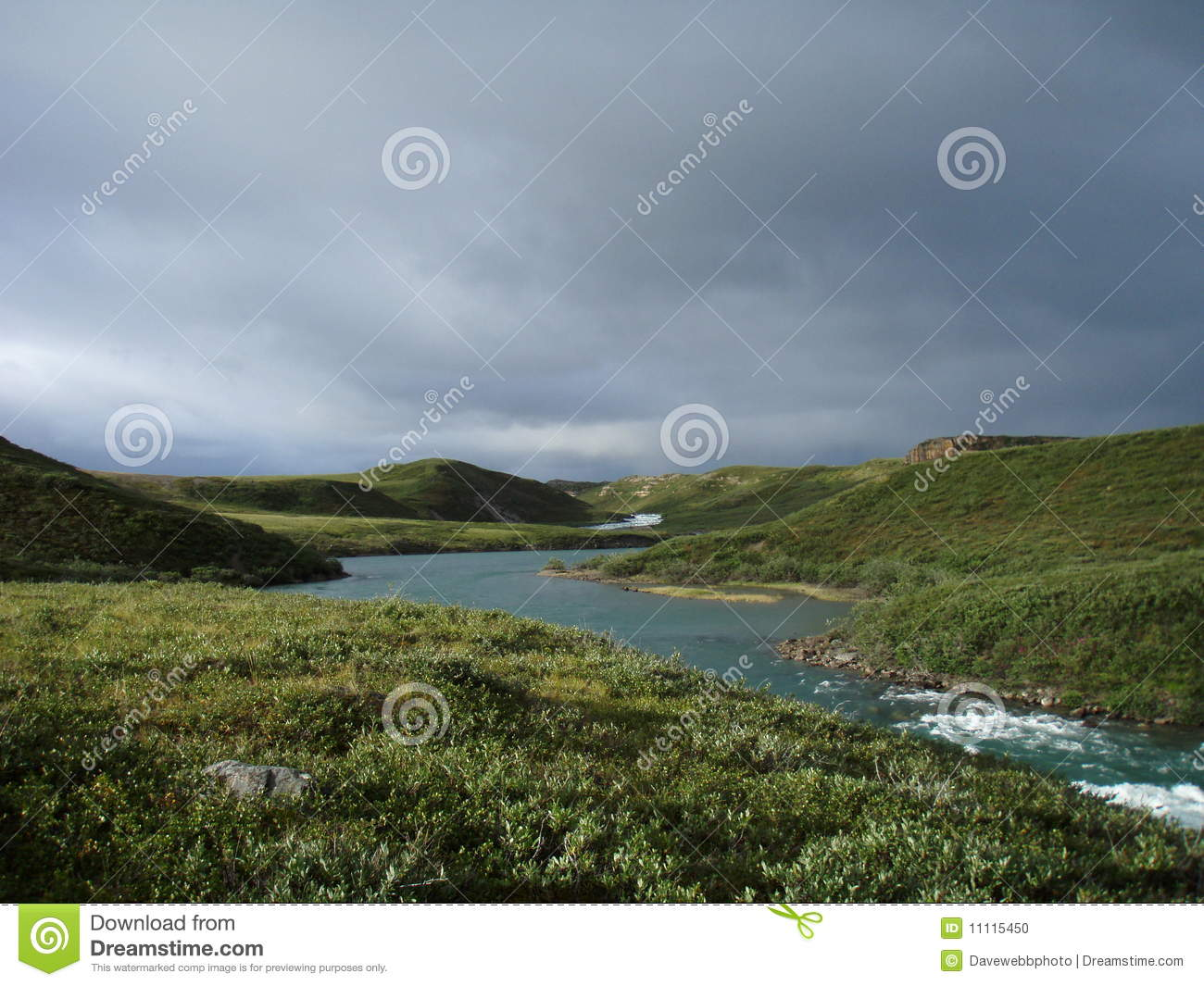 Download Arctic Tundra stock photo. Image of rapids, shrubs, river - 11115450