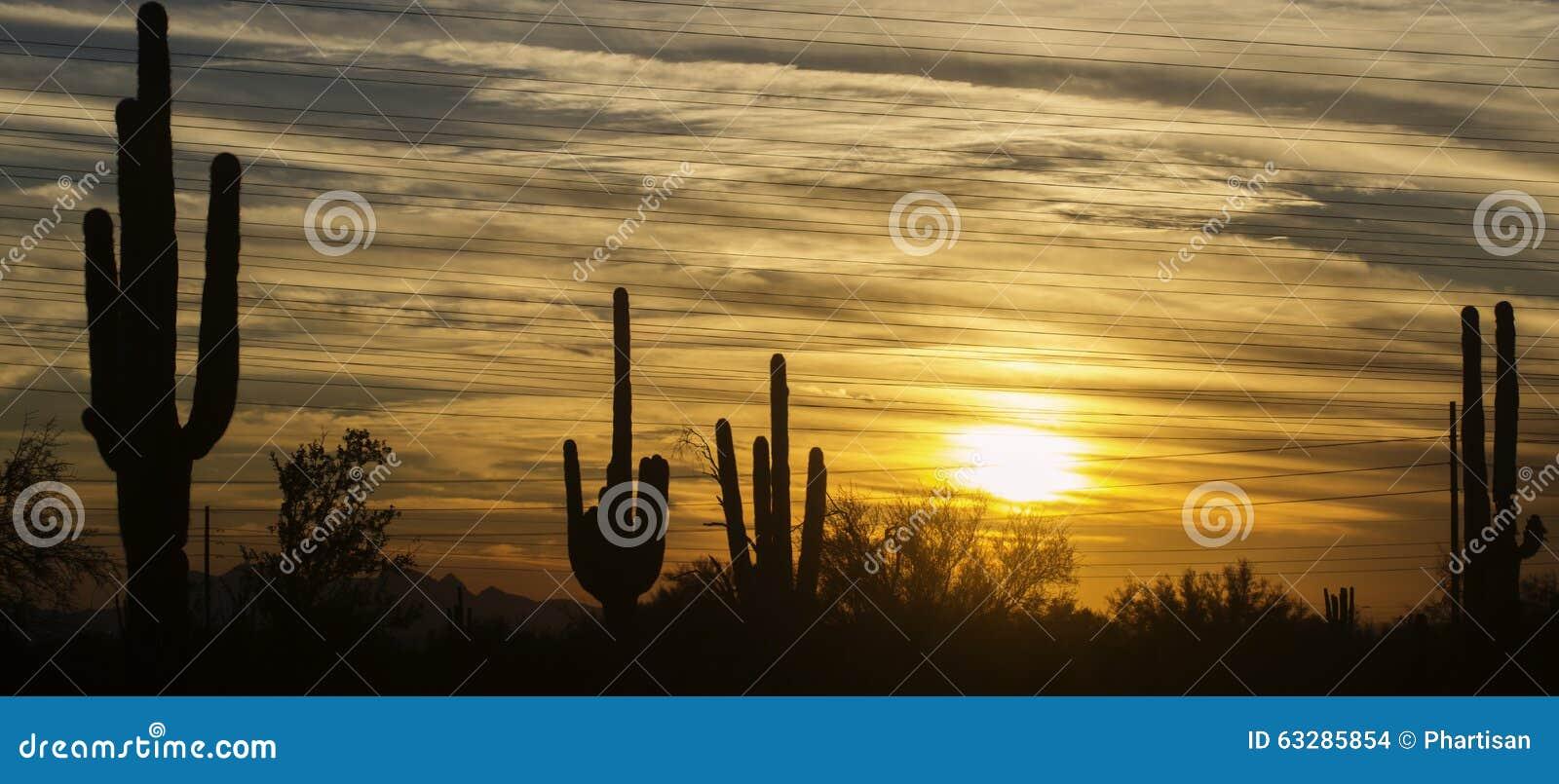 Area del paesaggio del deserto dell Arizona, Phoenix, Scottsdale