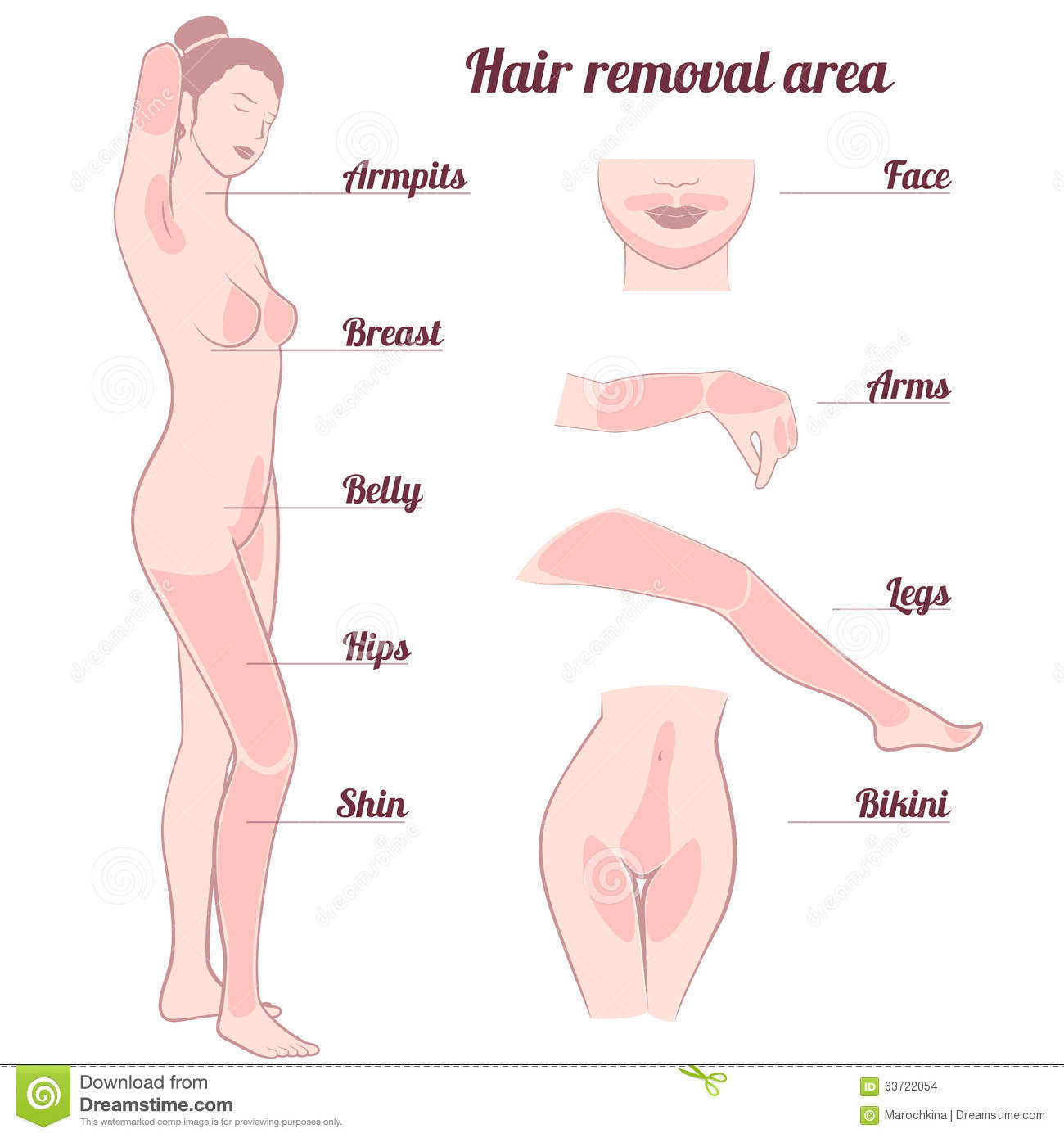 Hair Removal In Bikini Area