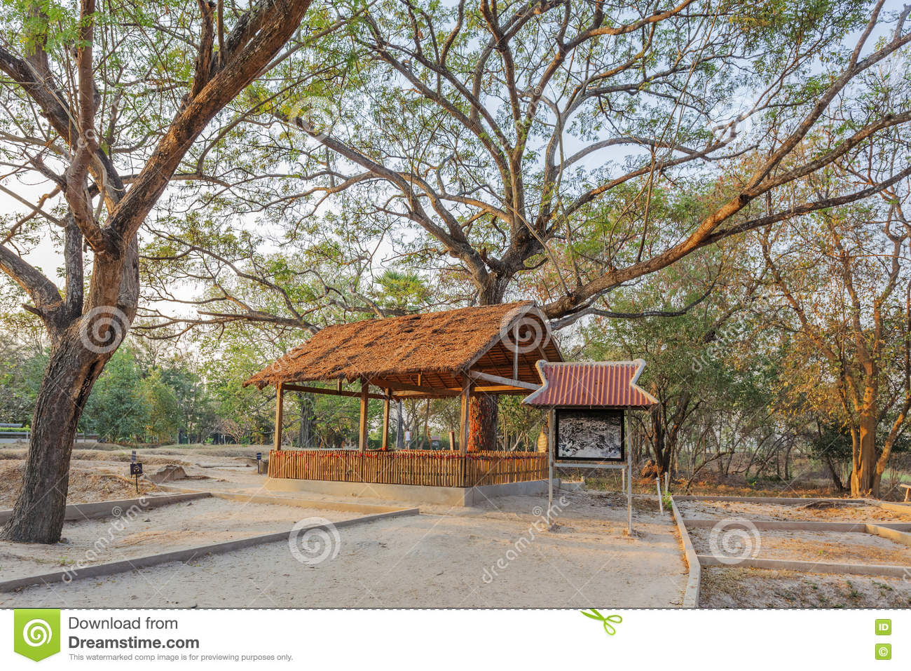 cambodia killing fields essay Explore susan griffie's board killing fields of cambodia on pinterest | see more ideas about civil wars, red and cambodia  war powers act of 1973 essay the.