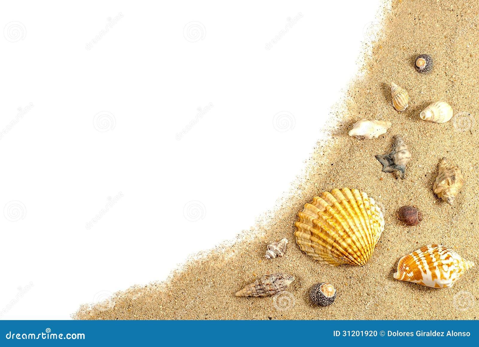 Areia e escudos da praia