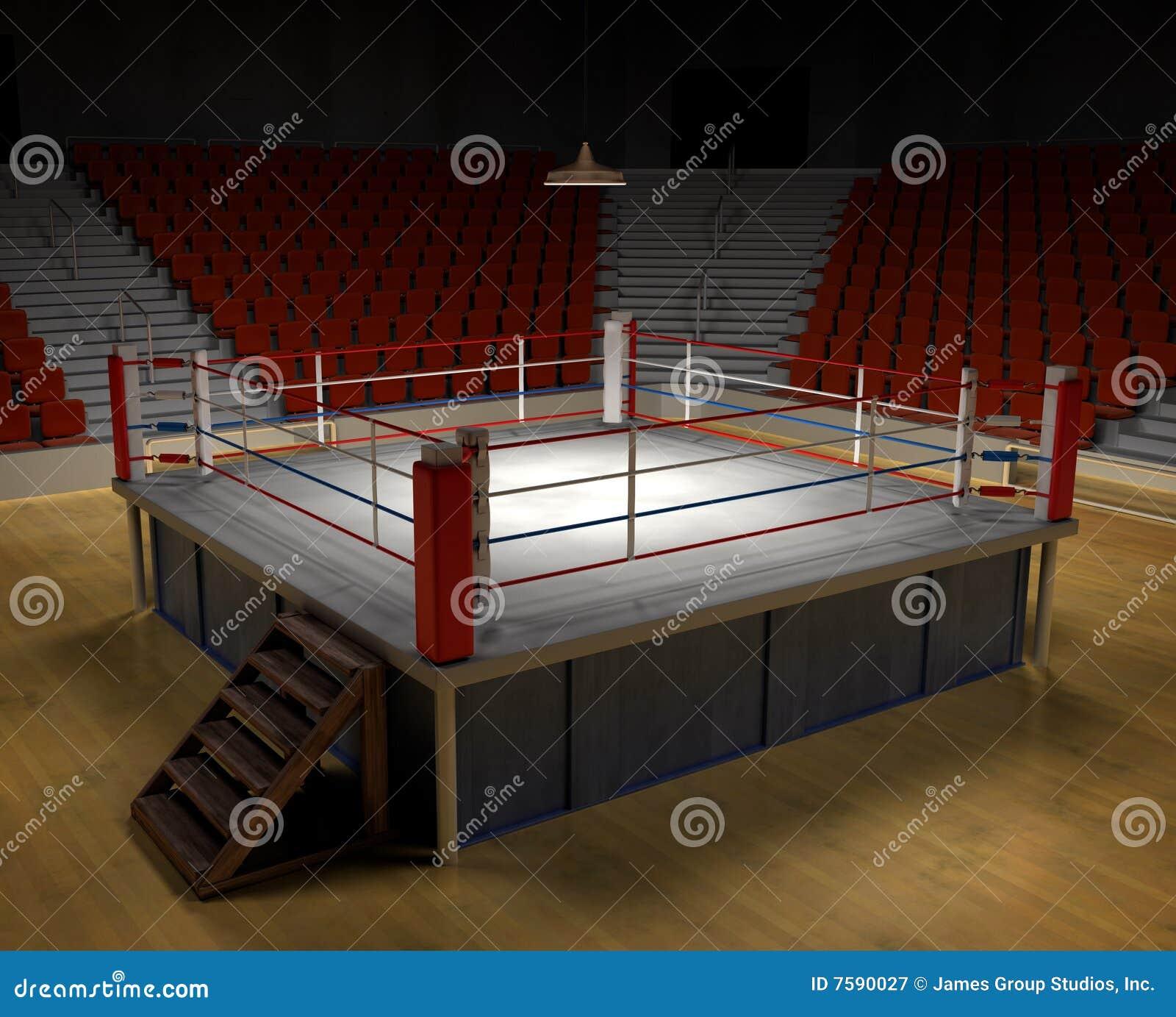 Arenaboxning
