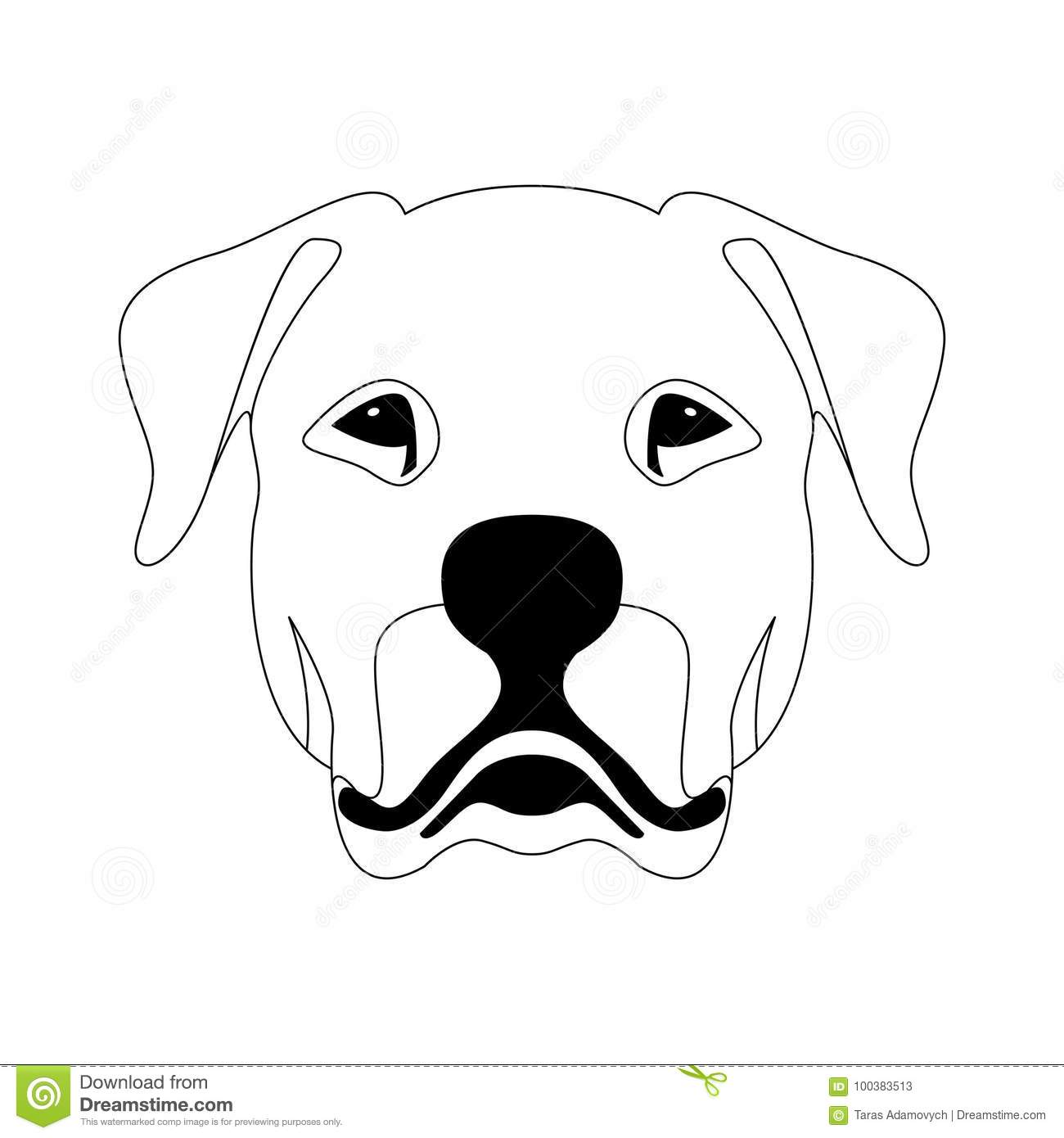 Line Drawing Of A Dog Face : Argentine dog face vector illustration line drawing stock