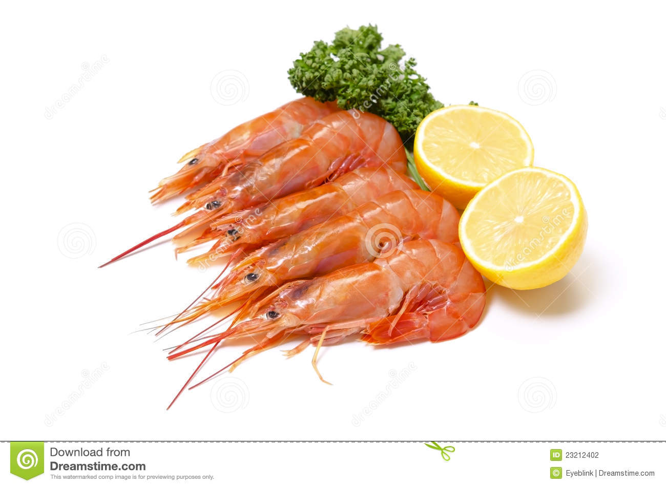 Argentine red shrimp stock photo. Image of shellfish - 23212402