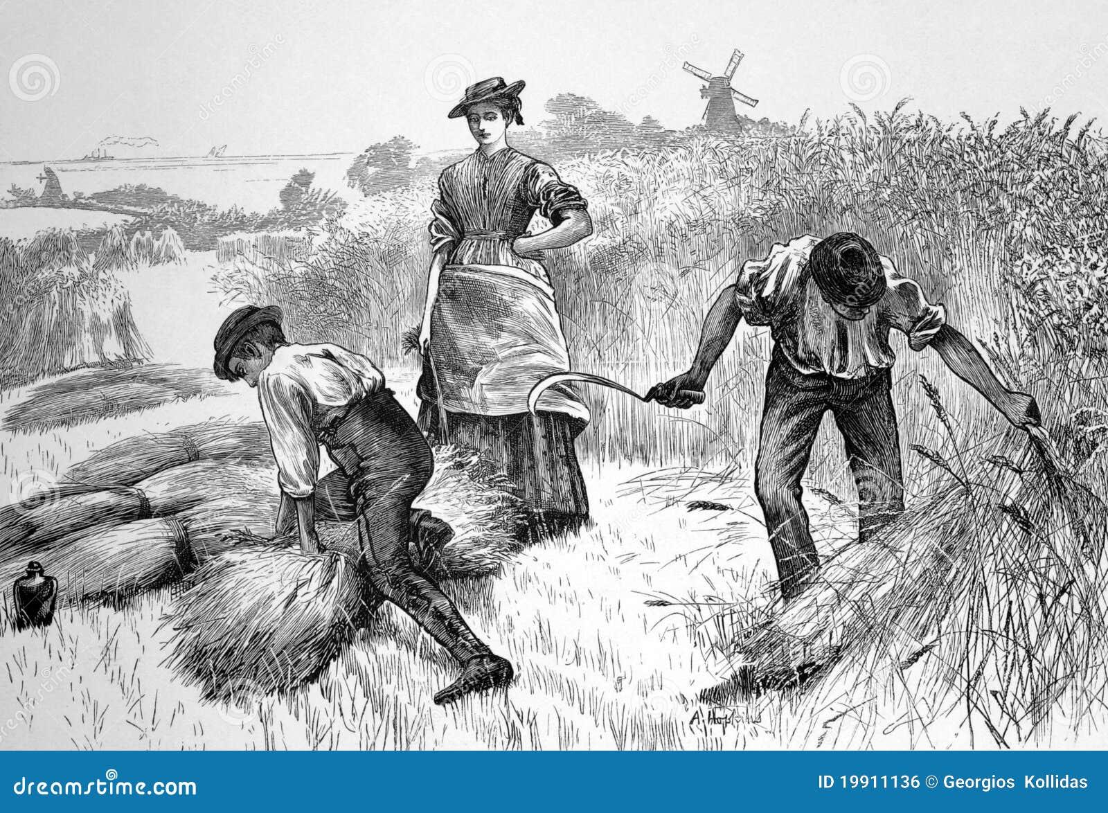 Farming 1800s