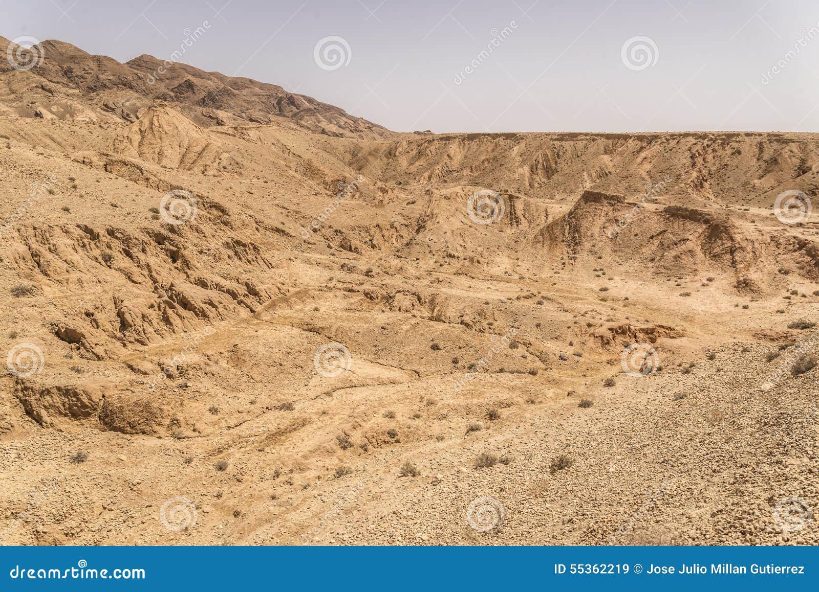 Argine della Tunisia