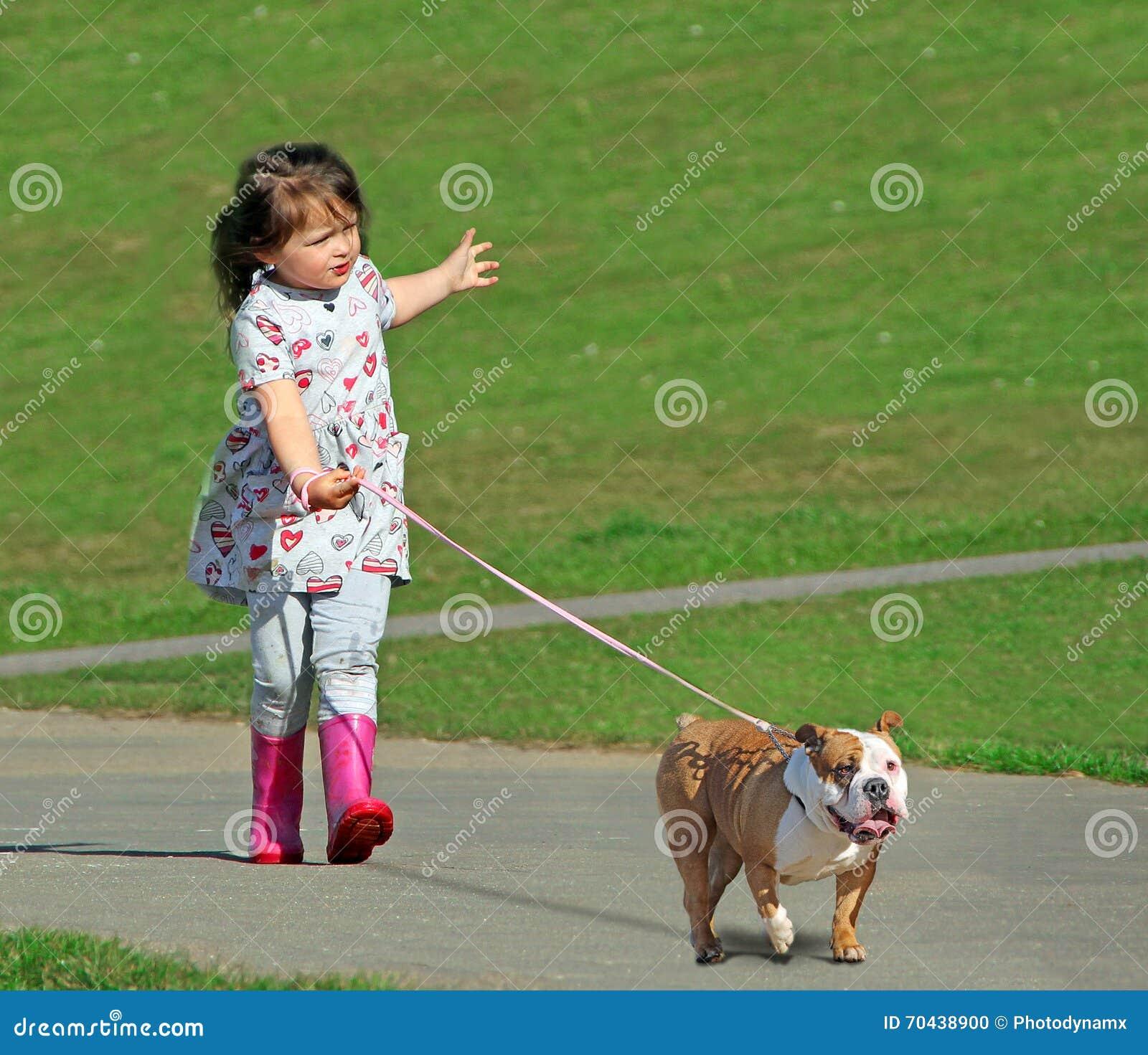 Argt begrepp för avelhundfara