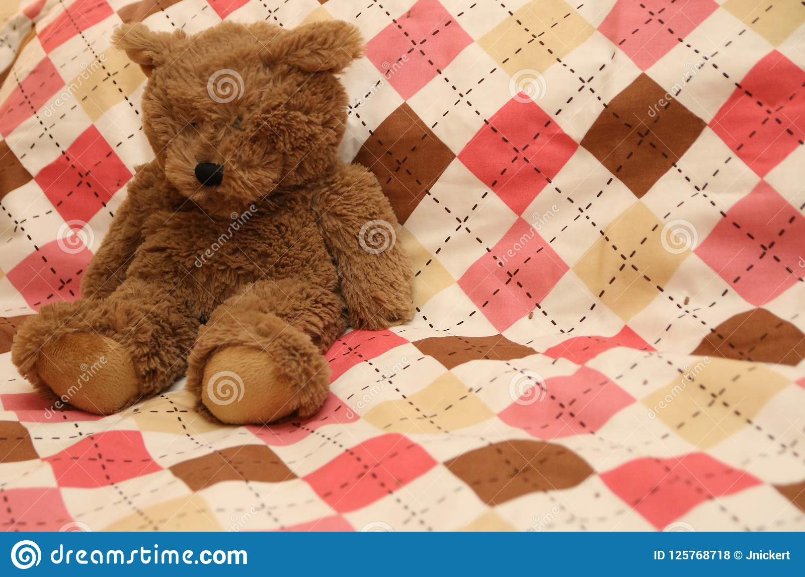 Argyle Teddy Bear