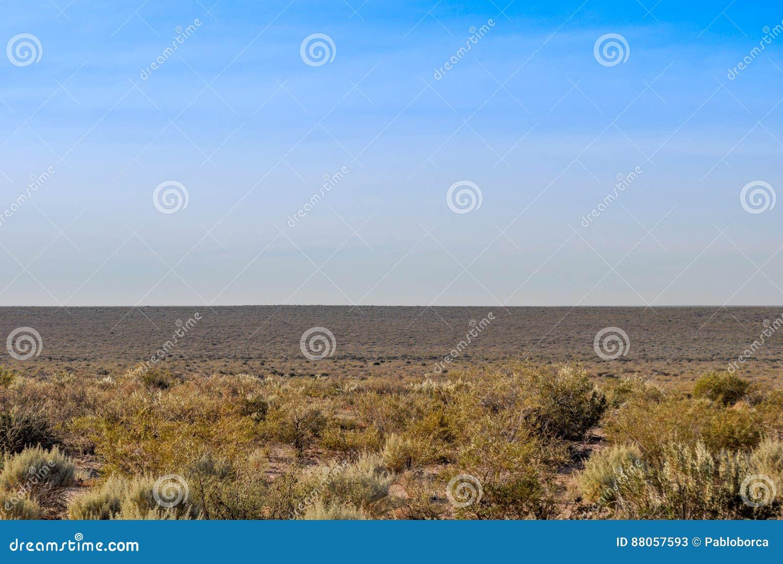 Arid desert of La Pampa, Argentina