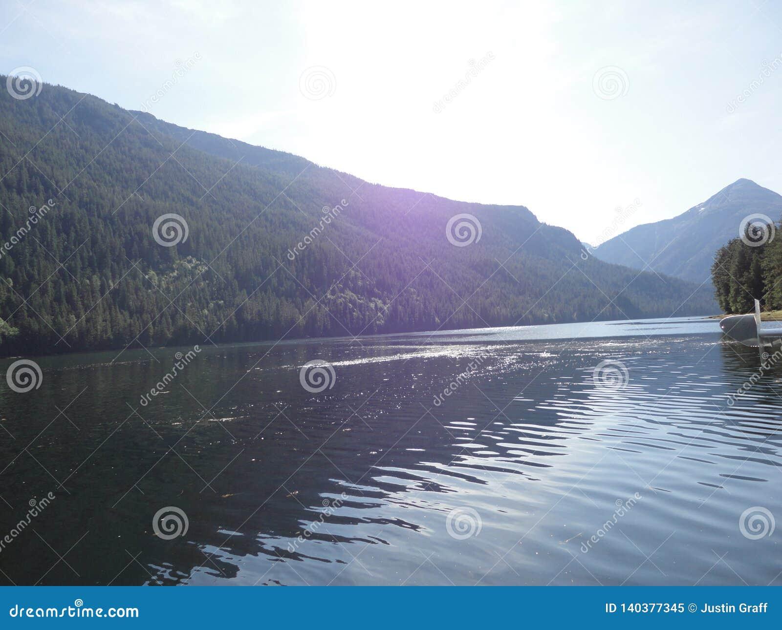 Ariel View av Misty Fjords utanför Ketchikan Alaska från en flötenivå Tempererad regnskog med sjöar och floder