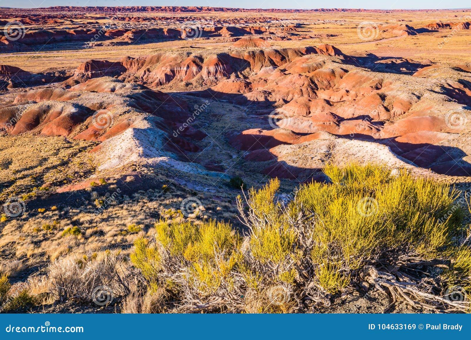 Download Arizona Geschilderde Woestijn Stock Afbeelding - Afbeelding bestaande uit zand, arizona: 104633169