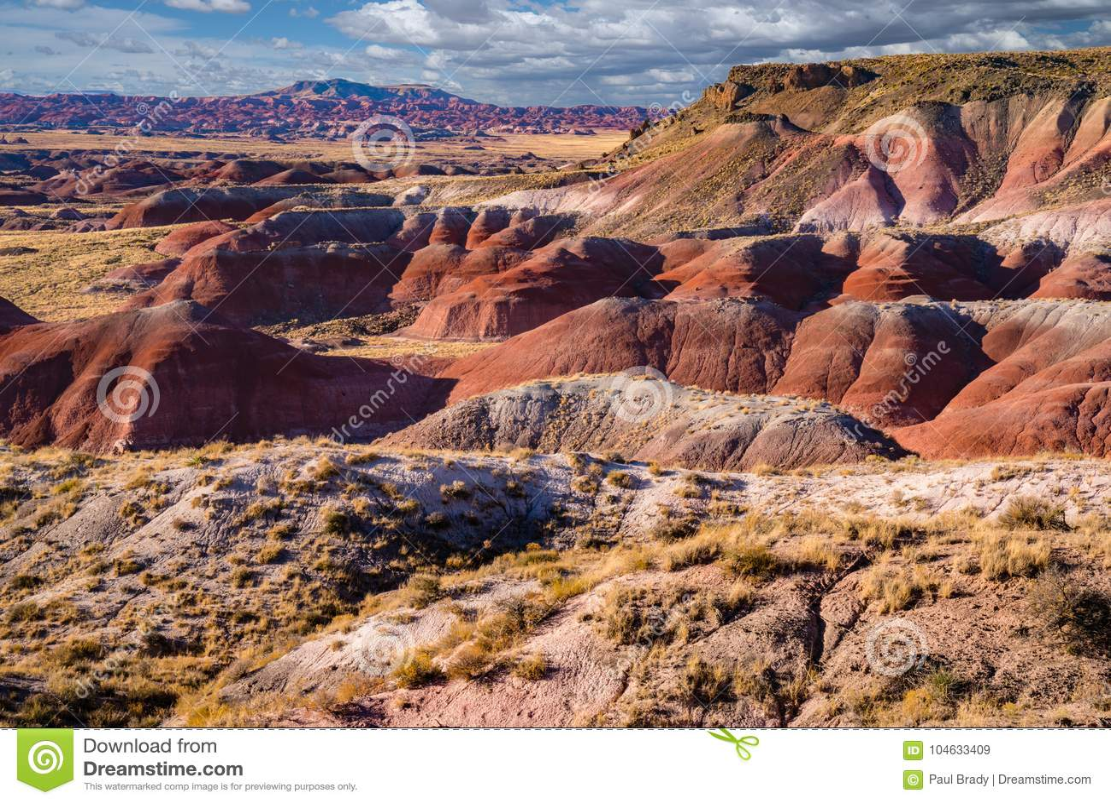 Download Arizona Geschilderde Woestijn Stock Afbeelding - Afbeelding bestaande uit hemel, erosie: 104633409