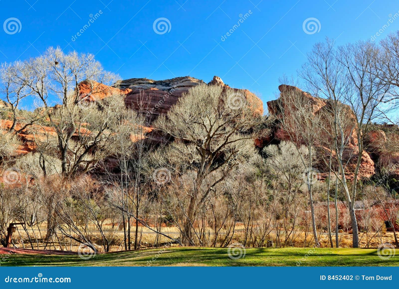 Arizona liggande