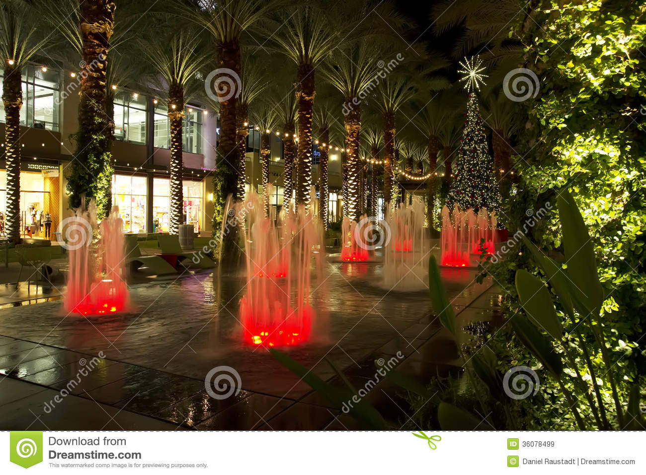 arizona shopping mall christmas tree and lighted palm trees
