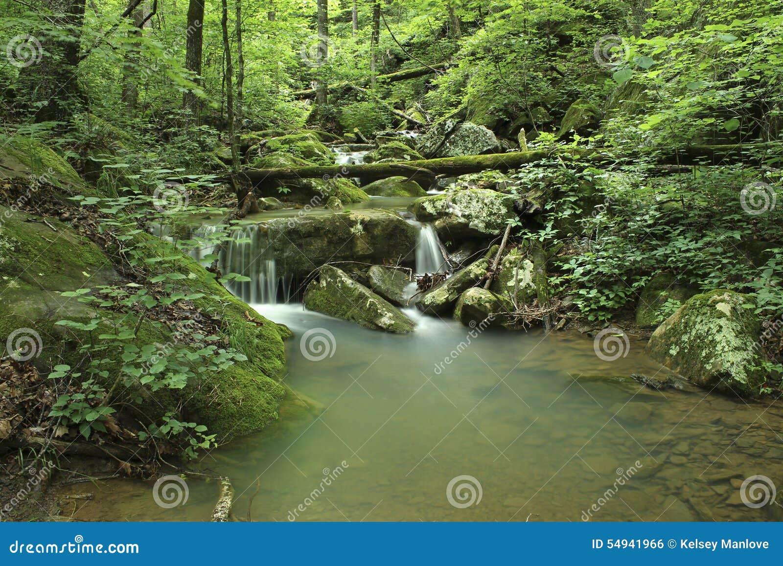 Arkansas Peaceful Mossy Green Waterfall Stock Photo ...