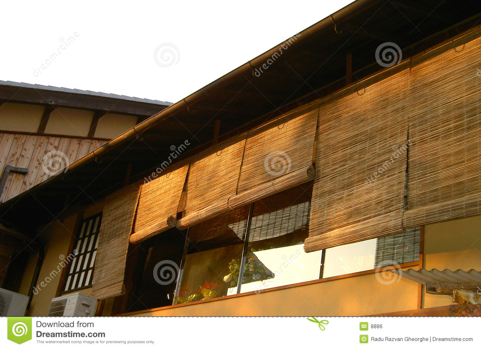 Arkitekturgion